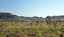 Hills and Acacia Landscape