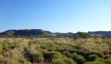 Hills and Spinifex Landscape